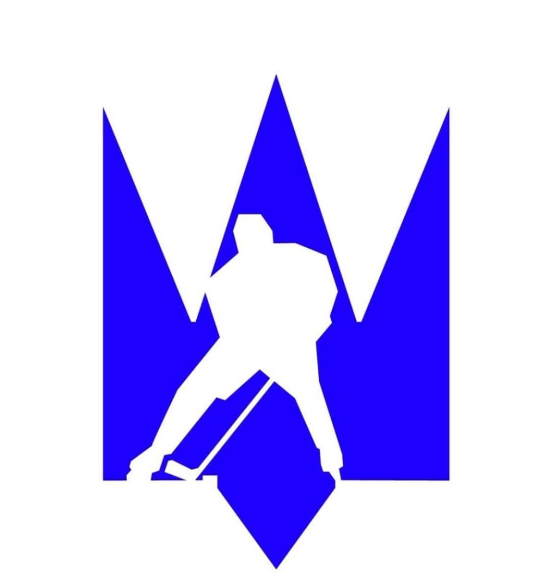 Федерация хоккея Украины презентовала план развития до 2033-го года