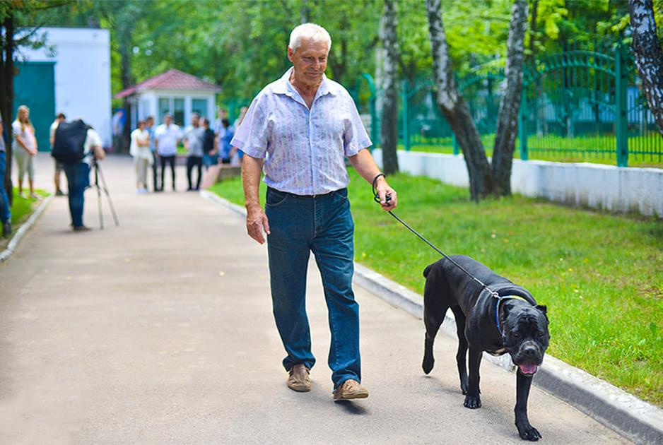 Михайло Кулько