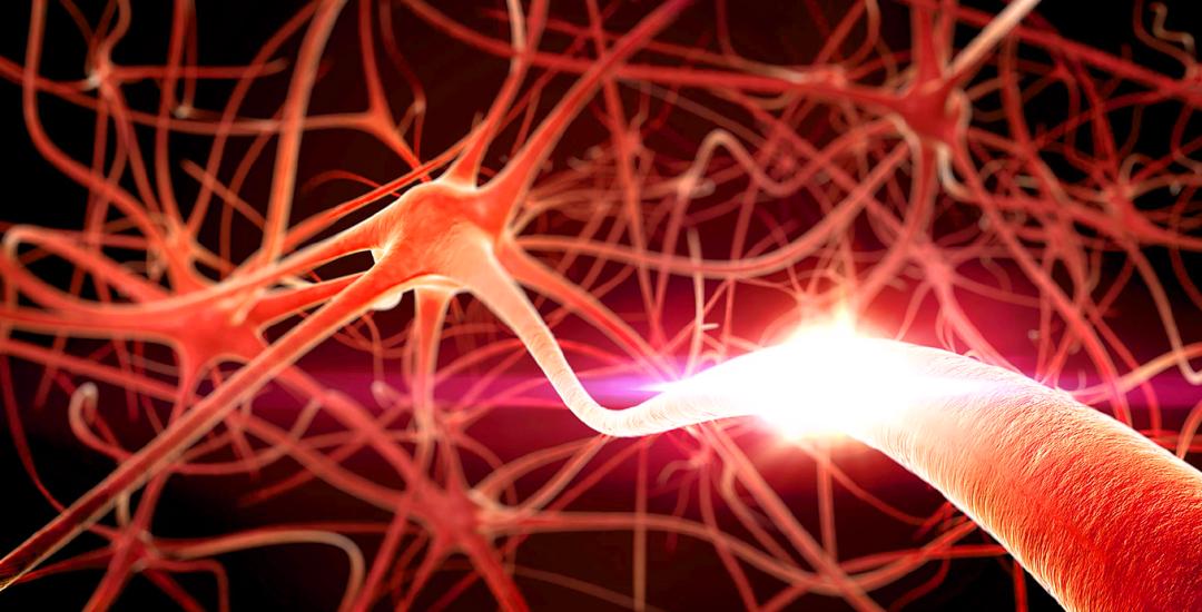 Коннектом - це фізична карта нейрональної структури вашого мозку