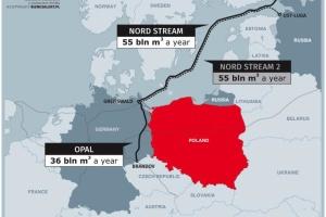 Мінекономіки ФРН не консультувалось з Україною щодо сертифікації Nord Stream 2 - Вітренко