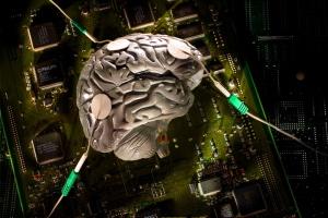 2021-2030. Добро пожаловать в мозг. На экскурсию