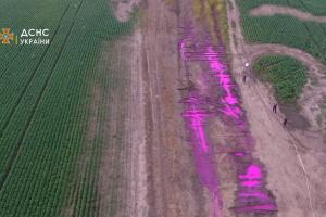 Рожеві калюжі на Рівненщині – у ДСНС пояснили причини