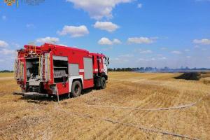 На Миколаївщині горіло пшеничне поле