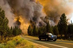 У Каліфорнії та Монтані через лісові пожежі оголосили надзвичайний стан