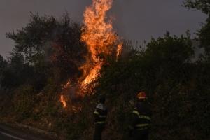 Сардинію охопили масштабні лісові пожежі - оголосили надзвичайний стан