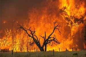 Пожежі в Туреччині, Італії та Греції впливають на погоду в Україні – синоптики