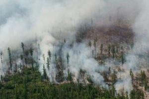 В российской Якутии выгорело более миллиона гектаров леса