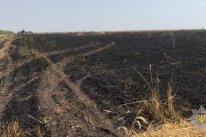В Одесской области огонь уничтожил 13 гектаров пшеничного поля