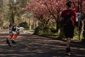 Двоногий робот Cassie пройшов п'ять кілометрів на одному заряді