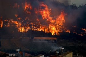 В Анталії горять 600 гектарів лісу - один загиблий, шестеро постраждалих