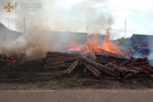 «Пограли з сірниками»: діти випадково спалили два будинки, авто і електроопори