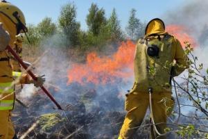 У Нідерландах створять спецбригади вогнеборців