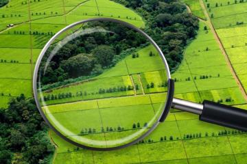 Près de 13 000 accords fonciers enregistrés en Ukraine