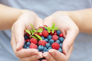 Finland expects more than 500 seasonal workers from Ukraine to pick wild berries