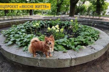 У львівському парку облаштували «Квітковий фонтан»