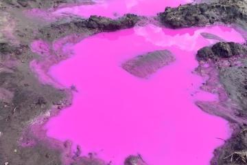На Рівненщині з'явилися калюжі з рожевою водою