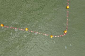 Вчений пояснив, чому Азовське море заполонили медузи