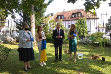 Álamos ucranianos plantados en Croacia