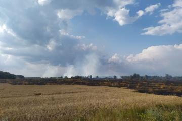 На Чернігівщині пожежа охопила 55 га пшеничного поля