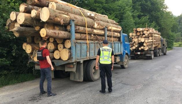 Партію деревини з «чужими» чипами затримали на Закарпатті