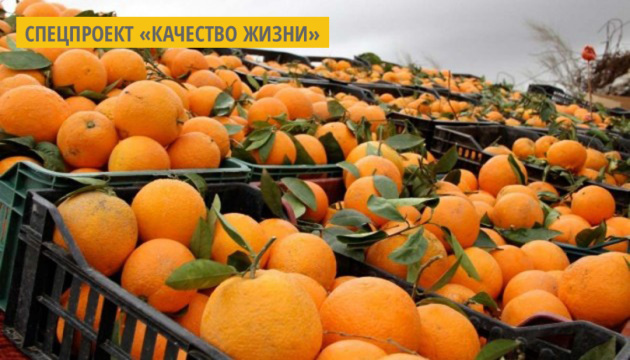В Италии создают настольные лампы из корок апельсина