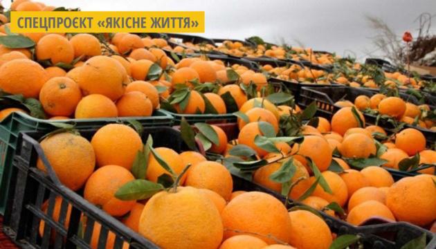В Італії створюють настільні лампи із шкірок апельсина