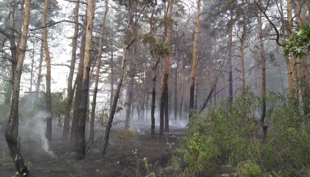Під Трьохізбенкою у зоні ООС горіли ліс і суха трава