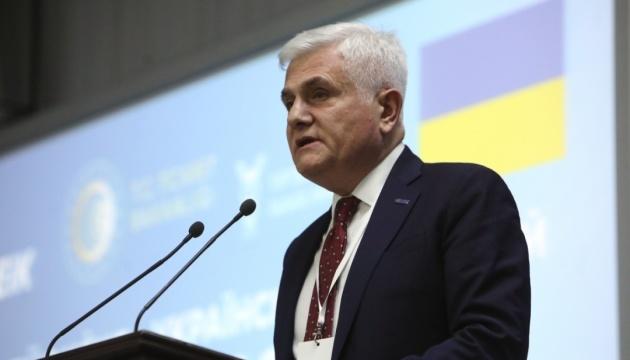 Украинский бизнес должен активнее идти в Турцию - председатель делового совета