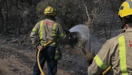 В Іспанії пожежа знищила понад 400 гектарів природного парку