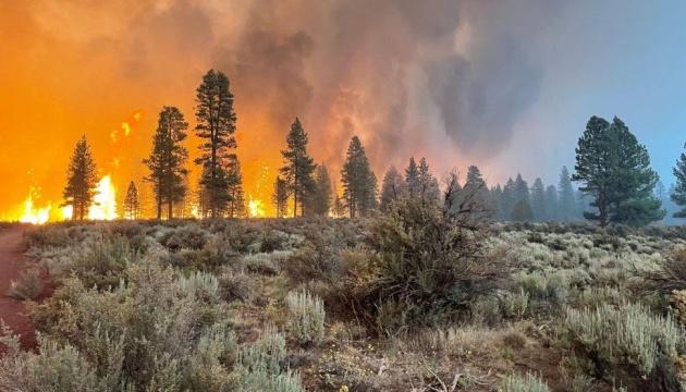 Велика пожежа знищила 121 тисячу гектарів лісу в Орегоні