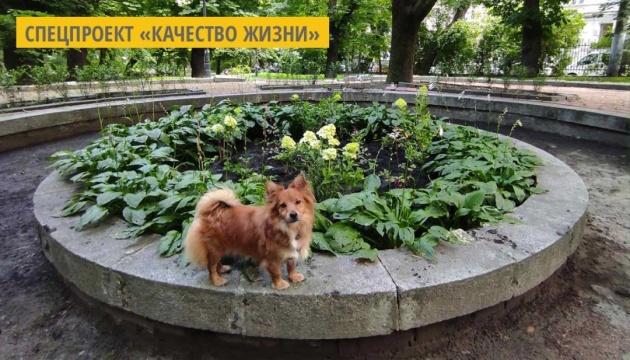 Во львовском парке обустроили «Цветочный фонтан»