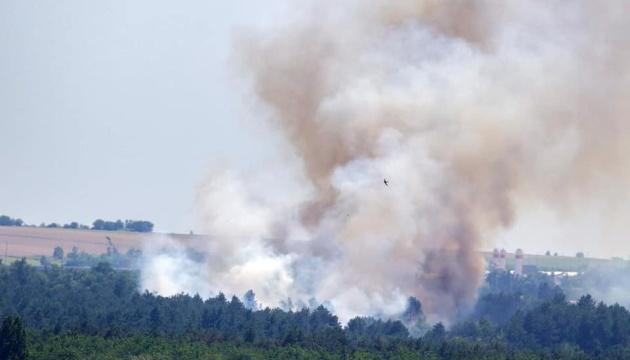 На Хортиці спалахнула лісова пожежа, підозрюють підпал
