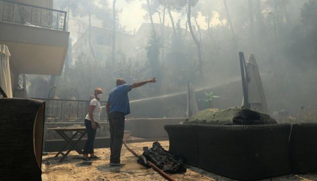 У Греції лісова пожежа загрожує передмістю Афін