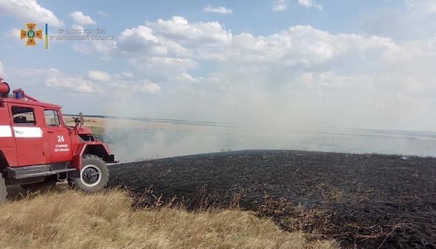 Вогонь винищив майже 20 гектарів сухої трави на Луганщині