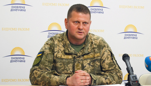 Präsident entlässt Chomtschak und ernennt Saluschnyj zum Oberbefehlshaber der Streitkräfte der Ukraine