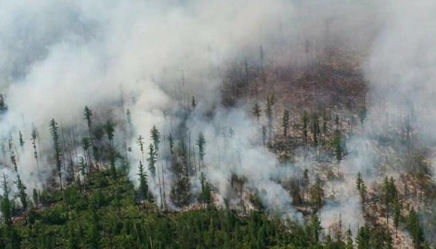 Почти 170 пожаров: в России горит 1,5 миллиона гектаров леса