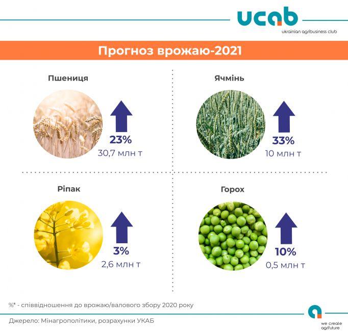 В Україні цьогоріч прогнозують рекордний урожай пшениці
