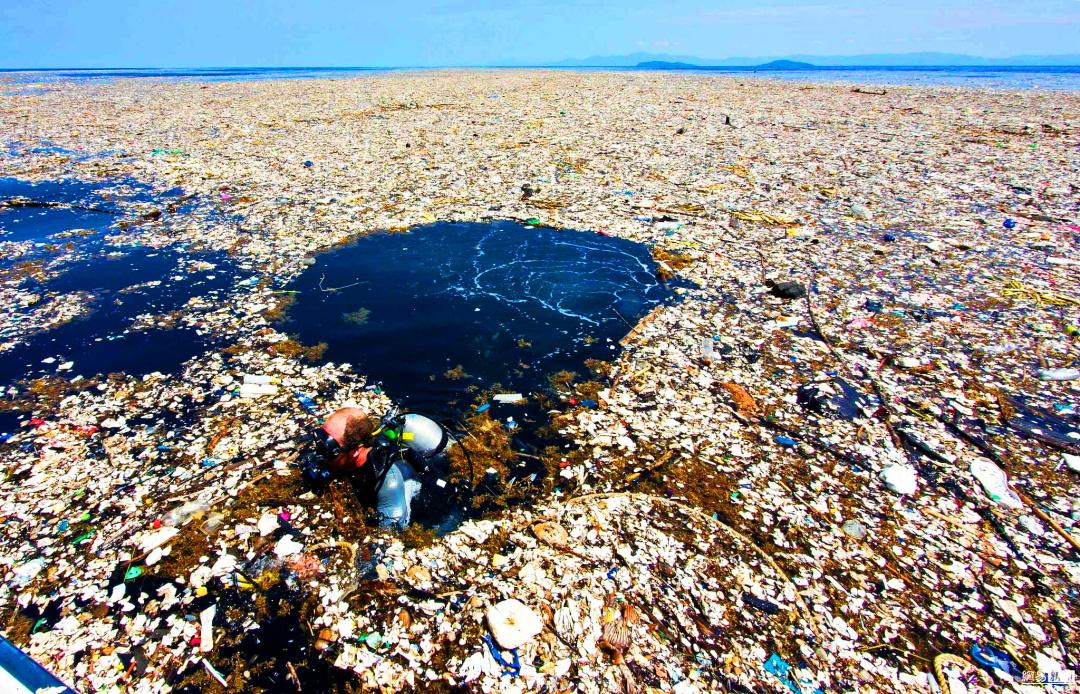 Фрагмент Великої тихоокеанської сміттєвої плями