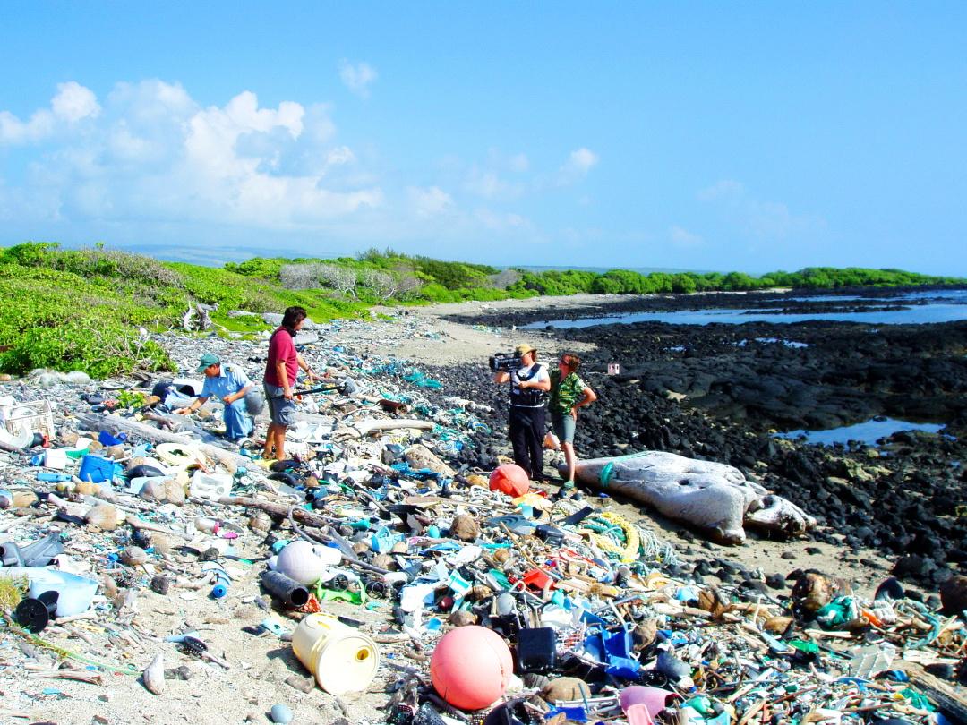 океанське сміття на пляжі Каміло Бич, Гавай