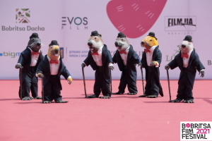 IV Bobritsa Film Festival собрал более четырех тысяч гостей