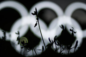 Olympics medal winners from Rivne to get new apartments
