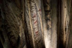 В іспанській печері знайшли малюнки неандертальців, яким понад 60 тисяч років
