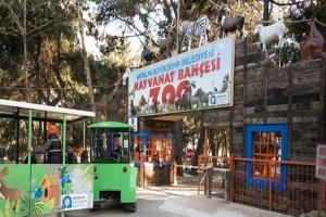 В Анталии из-за пожаров закрыли один из крупнейших в Турции зоопарков