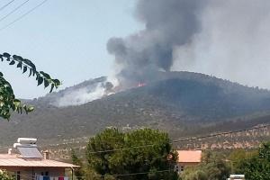 Українка розповіла про пожежі в Туреччині, евакуацію та реакцію населення
