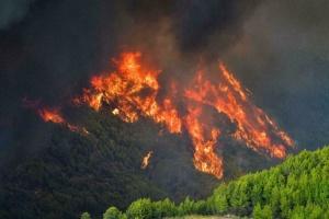 У Греції від лісових пожеж рятують Стародавню Олімпію