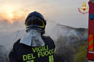 В Італії 70% лісових пожеж – це наслідок людських дій