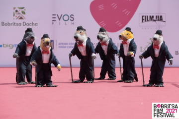 IV Bobritsa Film Festival зібрав понад чотири тисячі гостей
