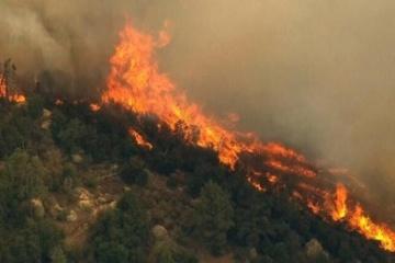 Die Ukraine bereit, Albanien im Kampf gegen Waldbrände zu helfen - Außenministerium