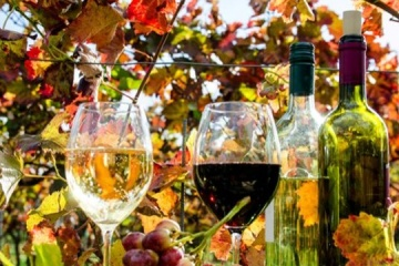 State-owned Odesavynprom wine producer put up for sale