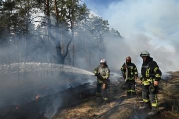 Estalla un incendio forestal en la región de Lugansk